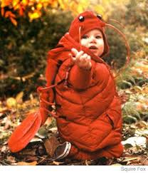 Lobster Costume Baby Lobster Costume Parenting