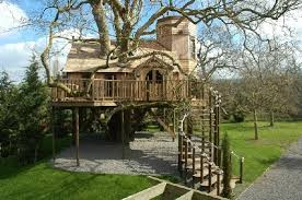Amazing Treehouses around the world  Travelphant Travel Blog
