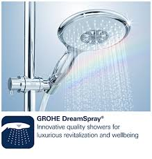 grohe retro fit 1 spray shower system with held