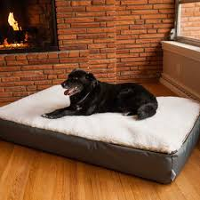 replacement cover super orthopedic lounge dog bed w cream
