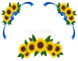 sunflower ribbon sunflower decoration icon border ribbon vector stock vector