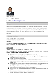 Sample Sales Executive Resume by Order Custom Essay Online Professional Cv For Sales Executive
