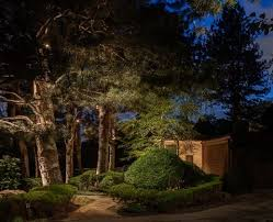 tree lighting ideas 4 concepts for lighting your evergreens
