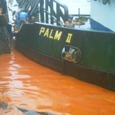 Minyak Cpo tumpahan limbah minyak mentah kelapa sawit diduga sebabkan kematian ikan