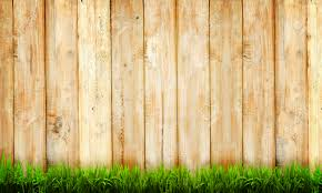 wood backdrop background of wooden fence and green grass stock photo picture
