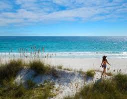 689 Best Beach Crafts U0026 by Things To Do Beaches Golf Panama City Beach Florida