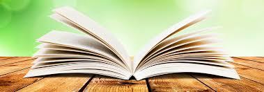 dmca policy e reading to go