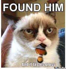 Grumpy Meme Face - grumpy cat is not amused by grimboy meme center