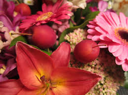 fruit and flowers heavy petal fruit and flowers