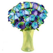 multicolored roses earthlight spectacular bouquet two dozen multicolored roses