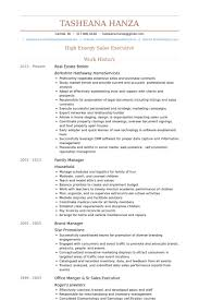 Real Estate Agent Resume Example by Download Real Estate Broker Resume Haadyaooverbayresort Com