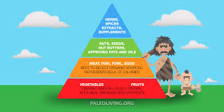 how to create a better food list for your paleo diet paleo living