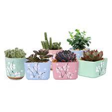 toko online 6x wituse mini putaran persegi dekorasi kitchen herb