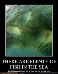 Fish In The Sea Meme - there are plenty of fish in the sea very demotivational