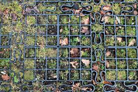 free images ground window underground pattern wash items
