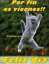 imagenes graciosas viernes de animales graciosos con frases lindas de feliz viernes