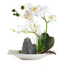 faux orchids faux orchids