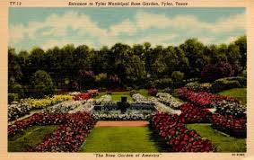 Landscaping Tyler Tx by Tyler Texas Rose Industry Rose Industry History Leading Rose