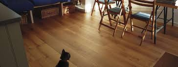 Laminate Floors With Dogs Looking After Wood Flooring With Pets