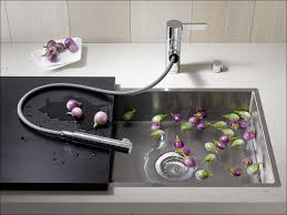 kitchen pull out kitchen faucet blanco faucets hansgrohe