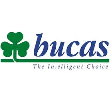 Buccas Rugs Bucas Ireland Bucasrugs On Pinterest