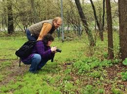 native plants extension master gardener kendall kane volunteers earn master gardener state honors