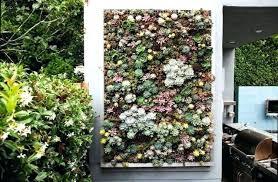 indoor wall garden diy full image for wall garden ideas indoor