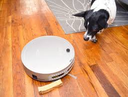 Dogs On Laminate Floors Bobi Pet Saved Me From A Sea Of Dog Hair The Broke Dog