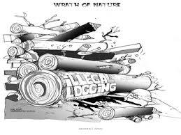 editorial cartooning sy2013 2014