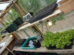 Inside Greenhouse Ideas by How To Grow A Garden Inside Hereu0027s How To Grow Small And