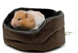 Hamster Bed Small Animal Furniture The Pet Furniture Store