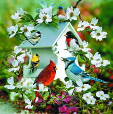giclee art birdhouse and birds by award winning michigan artist