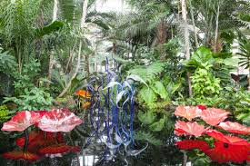 chihuly at the ny botanical garden is a waking dream