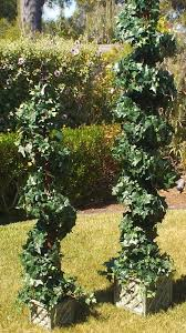 Preserved Boxwood Topiary Trees Decorating Beautiful Topiaries For Outdoor Modern Garden