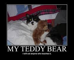 Teddy Bear Meme - teddy bear demotivational poster by eunacis on deviantart