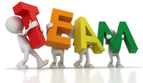 one organization the new culture of teaming building organization teams