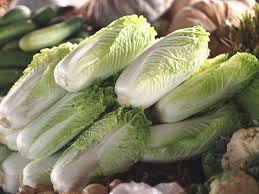 cabbage china is cabbage and how to cook it