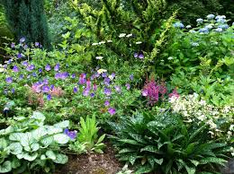 Backyard Planning Ideas Peonies Landscaping Ideas Photo Gallery For Perennial