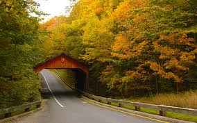 america s best drives for spotting changing leaves travel leisure