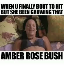 Amber Meme - whenufinally boutto hit butshebeen growing that amber rose bush