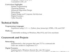 Sample Of Reference In Resume by Character References Resume Sample Examples Template Google Docs