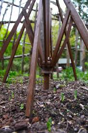 How To Fix Patio Umbrella Patio Umbrella Trellis Trash Backwards Blog