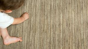 Mission Area Rugs by Earth Weave