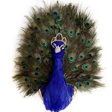 peacock taxidermy faux taxidermy animal head wall mount