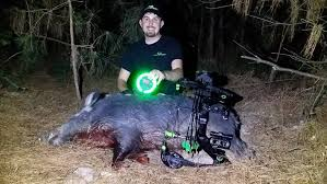 hog hunting lights for feeder hog hunt at night with the green kill light motion sensor feeder