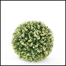 Topiary Balls With Flowers - 15in variegated boxwood topiary ball outdoor
