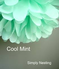 mint green tissue paper cool mint tissue paper pom poms baby shower fall colors