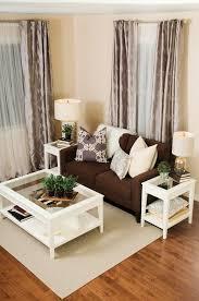 fresh decoration brown living room decor homey idea 1000 ideas