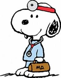 25 snoopy pictures ideas peanuts snoopy