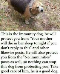 Dog Text Memes - immunity dog the canine with magical powers protecting twitter